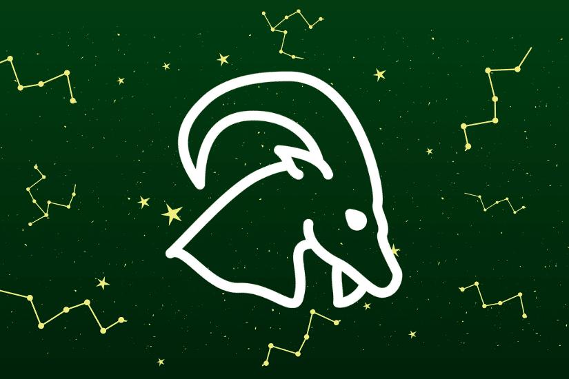 Tout savoir sur le Signe Astrologique du Capricorne